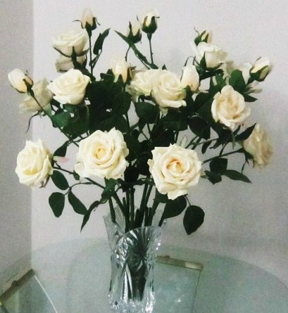 Artificial White Roses at cozy corner (close up)