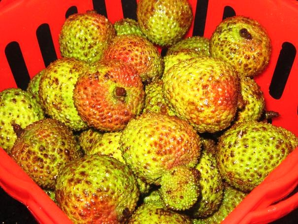 Fragrant and Delicious Lychees